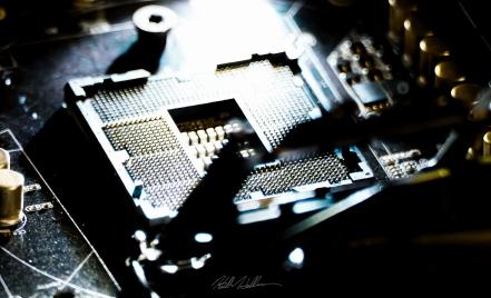 1155 Socket Pins Closeup